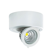 Nadgradna downlight